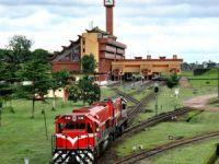 O ülkede feci tren kazası: 53 ölü