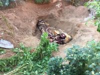 Askerlik şubesinde 2 ceset bulundu
