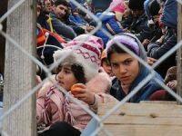ABD'deki bir ilçeden Suriyeli sığınmacı istemiyoruz kararı