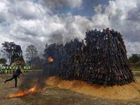 Kenya binlerce silahı yaktı