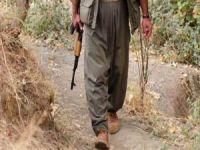 Bitlis'te bir PKK'lı teslim oldu