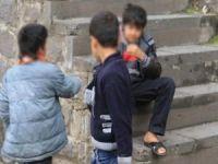 Bitlis'te uyuşturucuyla yapılacak mücadelenin yol haritası belirlendi