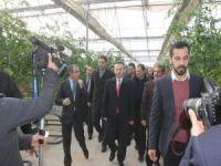 Diyarbakır'da seracılık için 55 Milyon TL aktarıldı