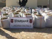 Diyarbakır'da dev esrar operasyonu