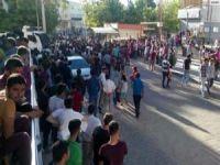 Üniversite öğrencileri arasında kavga: 8 kişi gözaltına alındı