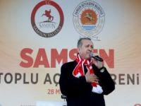Erdoğan: Bu Ülkeyi ve Milleti Ölümüne Seviyoruz