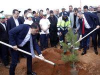 "Gaziantep'te ""Bi Dünya Yeşil"" projesi"