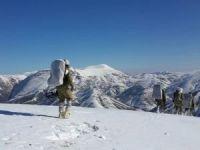 Gri listedeki 2 PKK'lı öldürüldü