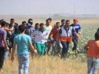 İşgalci İsrail 80'den fazla Filistinliyi yaralandı