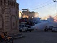Viranşehir'de haşerelere karşı ilaçlama başladı