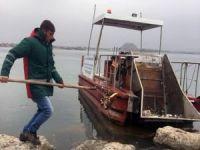 Deniz süpürgesi temizliği sürdürüyor