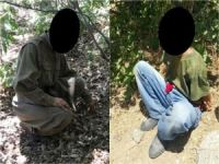 Kulp'ta PKK'ya büyük darbe!