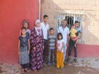 9 kişilik ailenin geçim kaynağı inek çalındı