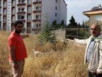 Tarihi mezarlığın GSM operatörüne kiralandığı iddiasına tepki