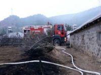 30 büyükbaş hayvan yangından son anda kurtarıldı