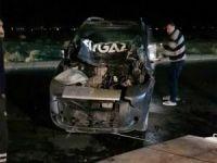 Başıboş eşek kazaya neden oldu!