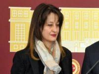 CHP'li Pavey'in milletvekilliğinin düşürülmesi karara Resmi Gazete'de