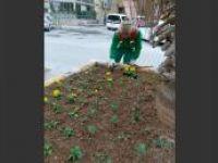 Kızıltepe'de mevsimlik çiçek dikimi başladı