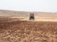 Ekinlerini toprağa atan çiftçiler yağmuru bekliyor