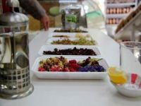 Uzmanlardan bitkisel çay uyarısı