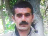 """""""Yeşil liste""""de aranan PKK'lı öldürüldü"""
