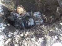 PKK'ye ait patlayıcılar ele geçirildi