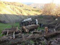 Kütük yüklü kamyon devrildi: Bir yaralı