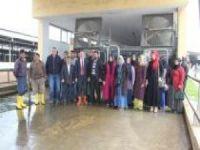 Adıyaman'da Süt Sağım Hijyeni ve Sanitasyon kursları açıldı