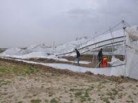 Fırtınadan zarar gören sera sakinlerinden yetkililere çağrı