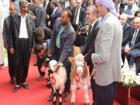 TÜYAP Diyarbakır 9'uncu Tarım Hayvancılık Fuarı ziyaretçi rekoru kırdı