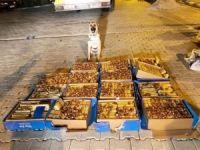 Hurma kutuları içerisinde 138 kilo eroin ele geçirildi