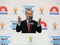 Erdoğan: Tüm saldırıların üstesinden milli iradeyle geldik