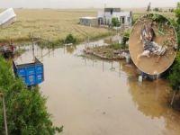 Su borusu patladı yüzlerce kümes hayvanı telef oldu