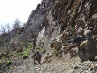 Siirt'te öldürülen PKK'lıların sayısı 7'ye yükseldi
