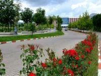 Bingöl Üniversitesine 14 yeni bölüme öğrenci alınacak