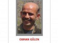 Gri listedeki PKK'lı Diyarbakır'da öldürüldü