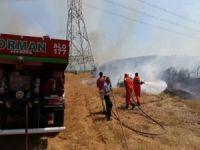 Bingöl'deki orman yangınının zarar tespit çalışması sürüyor