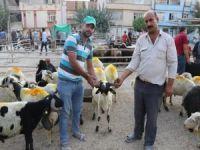 Kurban pazarları arefe günü hareketlendi
