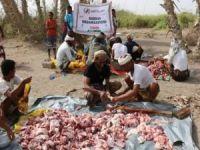 Avrupa Yetim-Der'den Yemen'e yardım