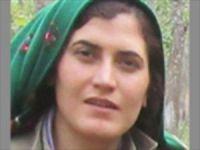 Gri kategoride aranan kadın PKK'lı öldürüldü