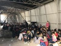 Van'da 301 kaçak yakalandı