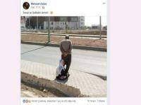 Sosyal medyada paylaşım rekoru kıran fotoğraf!