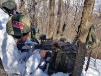 Tunceli'de iki asker hayatını kaybetti