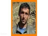 Turuncu kategoride aranan PKK'lı öldürüldü