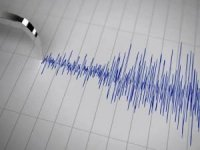 Van Muradiye'de deprem