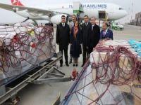 ABD'ye kaçırılan mozaikler Gaziantep'e getirildi