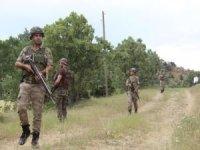Bitlis'te 43 köy ve mezrada sokağa çıkma yasağı ilan edildi
