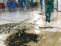Böcek istilası nedeniyle Kabe'de namaz kılınamadı