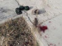 İran'da askeri üsse saldırı: Bir ölü 5 yaralı
