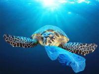 Avrupa Parlamentosu plastik ürün kullanımını yasaklıyor